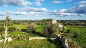 Parco di Rauccio